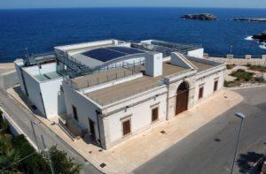 Read more about the article Fondazione Museo Pino Pascali