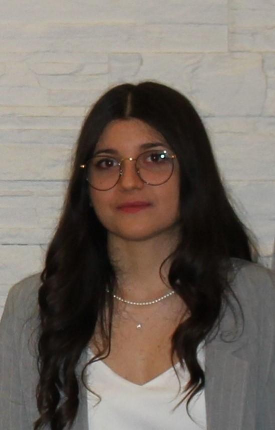 Read more about the article Tesi di Laurea: BIPV ed edilizia storica a Marcianise (CE)